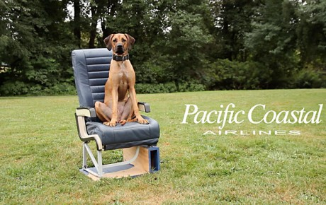 Pacific Coastal Airlines social video 2013